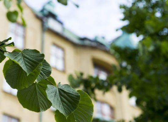 Helsingin HO 29.6.2018 nro 882: Osakas ei varoituksista huolimatta hankkiutunut eroon asuntonsa tavararöykkiöistä – taloyhtiö teki töitä sinnikkäästi ja huoneiston hallintaanotto onnistui