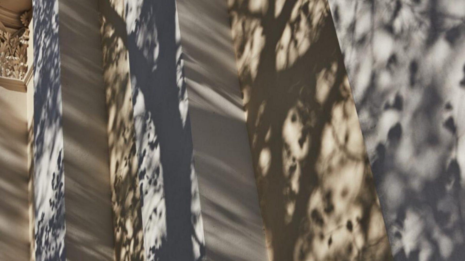Kuhanen | Asikainen | Kanerva