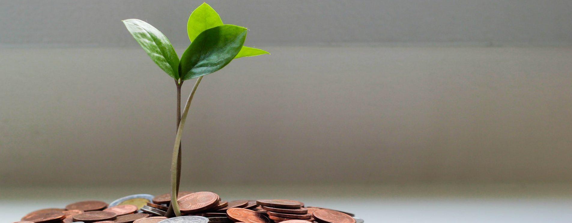 Kysy taloyhtiöstä: Miksi yhtiökokouksissa päätetään vuosittain vastikkeiden rahastoimisesta ja mitä rahastointi käytännössä tarkoittaa?